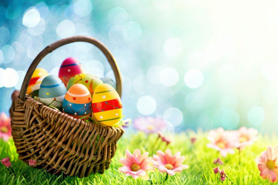 Egg-streme Egg Hunt