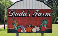"Duda's Farm ready for annual ""Pumpk'n Pick'n Hayrides"" in Brownsville, Fayette County, 2018"
