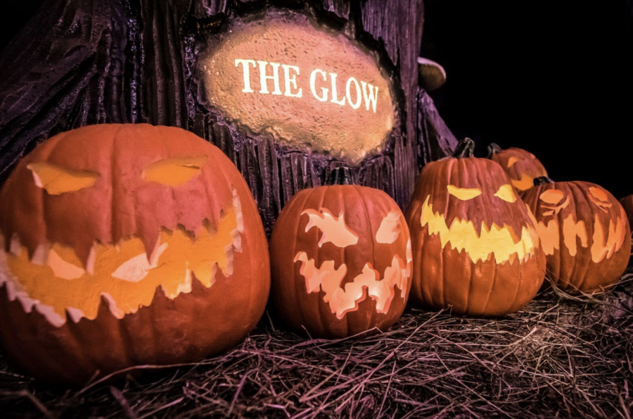 The Glow: A Jack-o-Lantern Experience