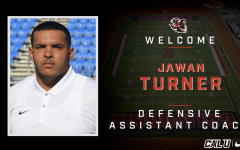 Football:  Turner hired as defensive assistant coach